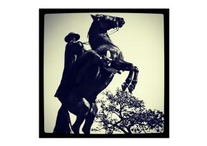 zorro no cavalo